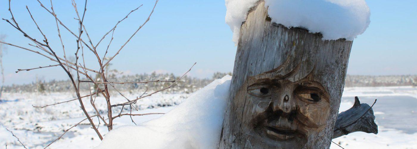 schneebedeckter Baumstamm mit einem Gesicht